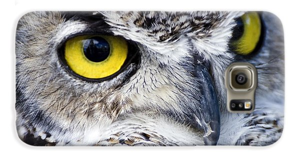 Great Horned Closeup Galaxy S6 Case