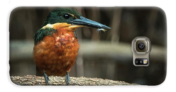 Green And Rufous Kingfisher Galaxy S6 Case