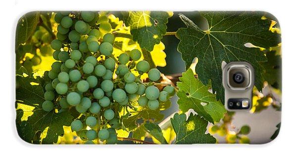 Green Grapes Galaxy S6 Case