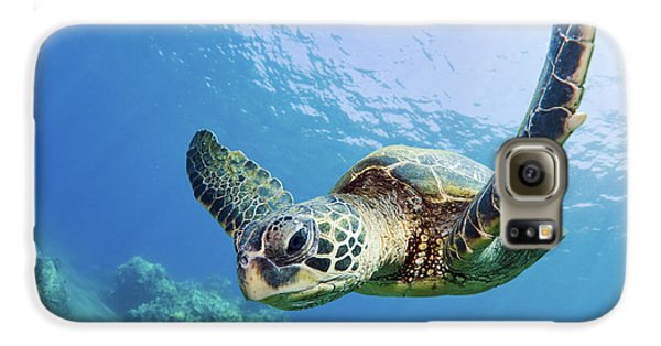 Green Sea Turtle - Maui Galaxy S6 Case by M Swiet Productions