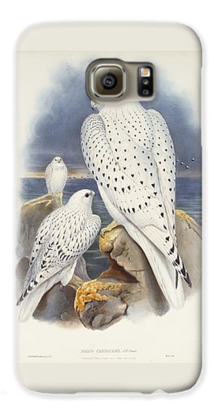 Greenland Falcon Galaxy S6 Case by John Gould