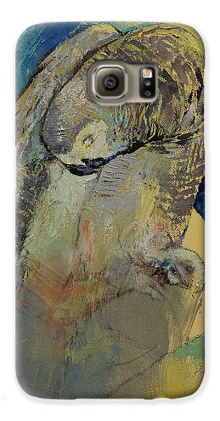 Macaw Galaxy S6 Case - Grey Parrot by Michael Creese