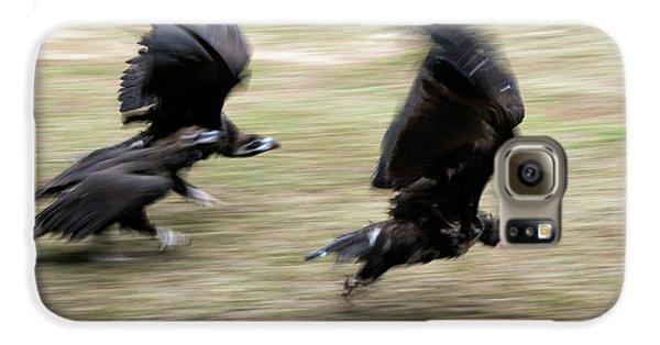 Griffon Vultures Taking Off Galaxy S6 Case by Pan Xunbin