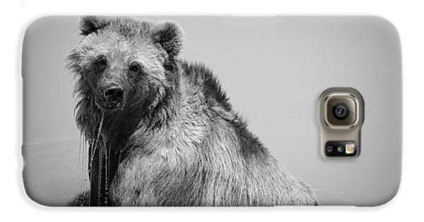 Grizzly Bear Bath Time Galaxy S6 Case by Karen Shackles