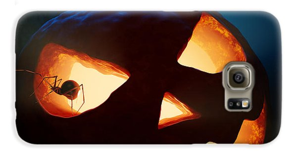 Halloween Pumpkin And Spiders Galaxy S6 Case by Johan Swanepoel