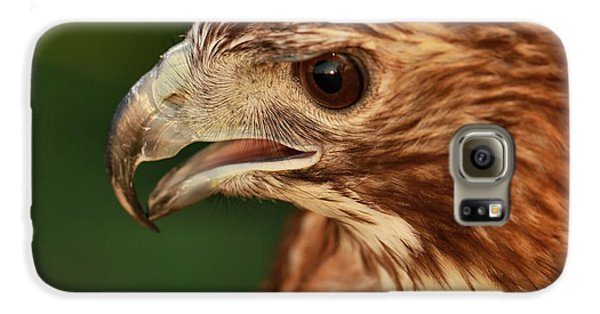 Hawk Eye Galaxy S6 Case