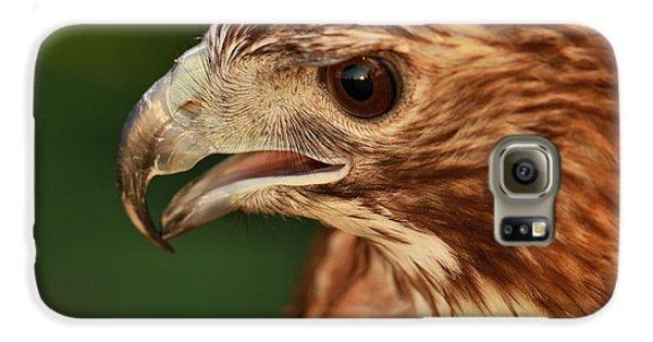 Hawk Eyes Galaxy S6 Case by Dan Sproul
