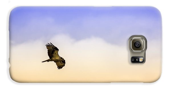 Hawk Over Head Galaxy S6 Case