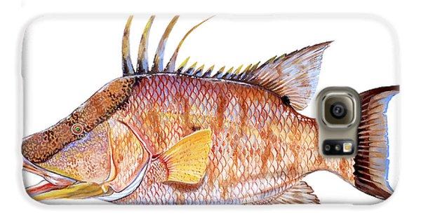 Mangrove Galaxy S6 Case - Hog Fish by Carey Chen