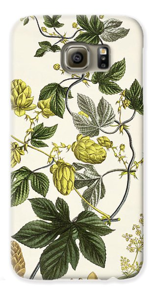 Hop Vine From The Young Landsman Galaxy S6 Case