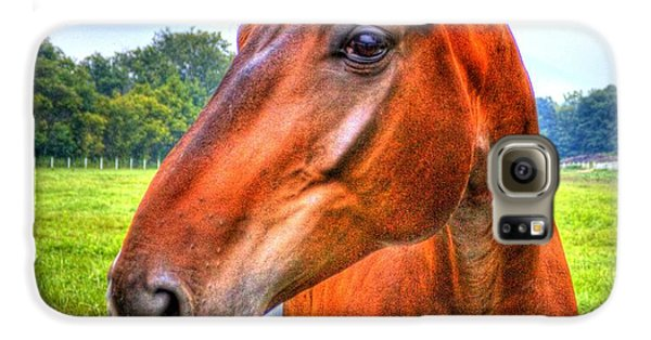 Horse Closeup Galaxy S6 Case