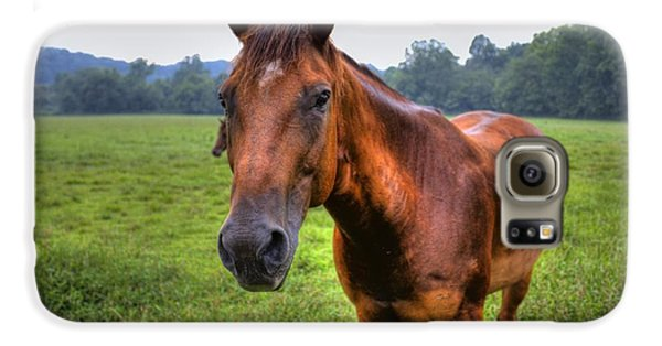 Horse In A Field Galaxy S6 Case