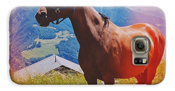 Horse In The Alps Galaxy S6 Case