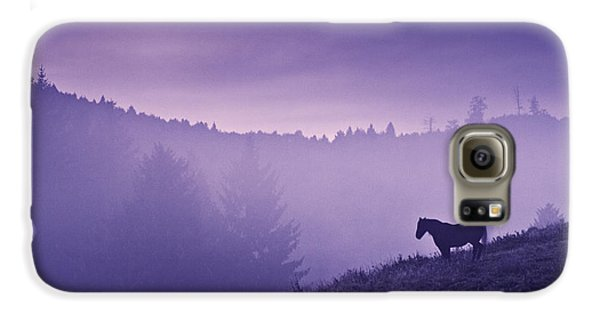 Horse Galaxy S6 Case - Horse In The Mist by Yuri Santin