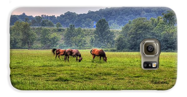 Horses In A Field 2 Galaxy S6 Case