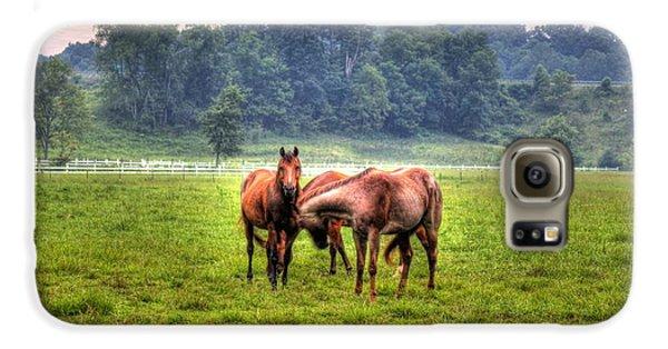 Horses Socialize Galaxy S6 Case