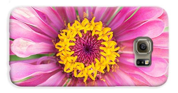 Hot Pink Zinnia Galaxy S6 Case