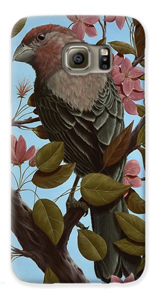 House Finch Galaxy S6 Case by Rick Bainbridge