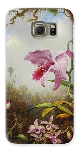 Orchid Galaxy S6 Case - Hummingbird And Two Types Of Orchids by Martin Johnson Heade
