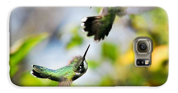 Hummingbirds Ensuing Battle Galaxy S6 Case