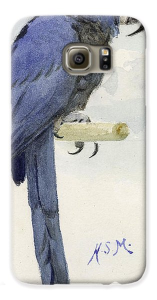 Macaw Galaxy S6 Case - Hyacinth Macaw by Henry Stacey Marks