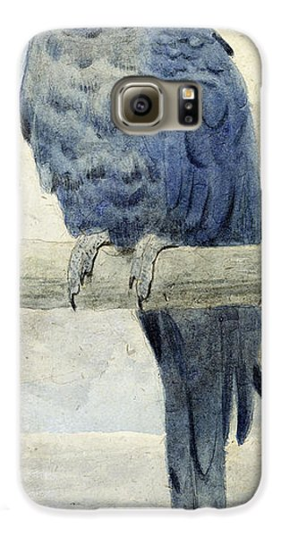 Macaw Galaxy S6 Case - Hyacinthine Macaw by Henry Stacey Marks
