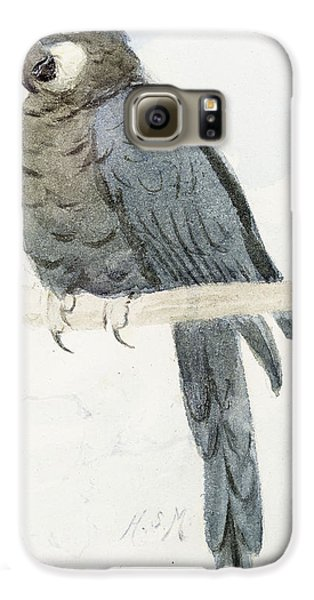 Macaw Galaxy S6 Case - Hyancinth Macaw by Henry Stacey Marks