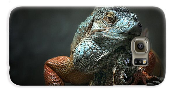 Dragon Galaxy S6 Case - I Am The King ,.. Who Else ! by Holger Droste