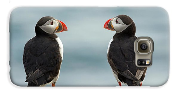 Puffin Galaxy S6 Case - I Love You - I Love You Too by Milan Zygmunt