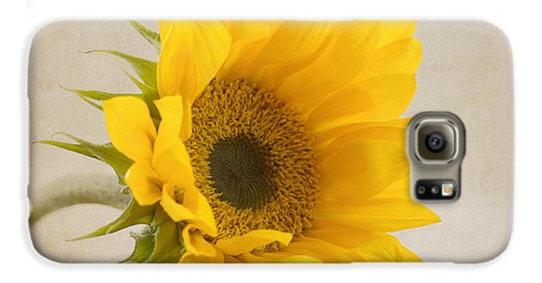 Sunflower Galaxy S6 Case - I See Sunshine by Kim Hojnacki