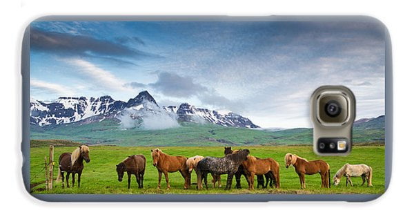 Icelandic Horses In Mountain Landscape In Iceland Galaxy S6 Case