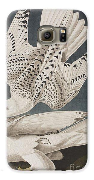 Illustration From Birds Of America Galaxy S6 Case by John James Audubon