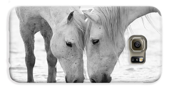 Horse Galaxy S6 Case - In The Water At Dawn II by Carol Walker
