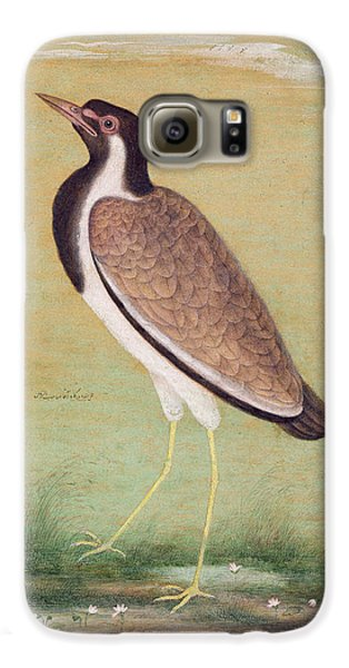 Indian Lapwing Galaxy S6 Case by Mansur