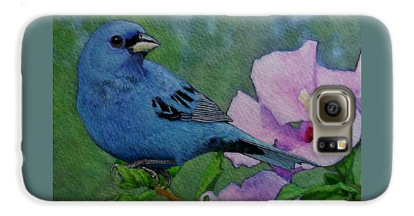 Indigo Bunting No 1 Galaxy S6 Case by Ken Everett