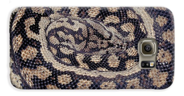 Inland Carpet Python  Galaxy S6 Case