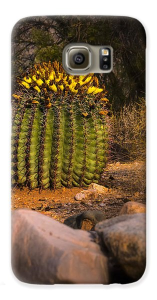 Galaxy S6 Case featuring the photograph Into The Prickly Barrel by Mark Myhaver