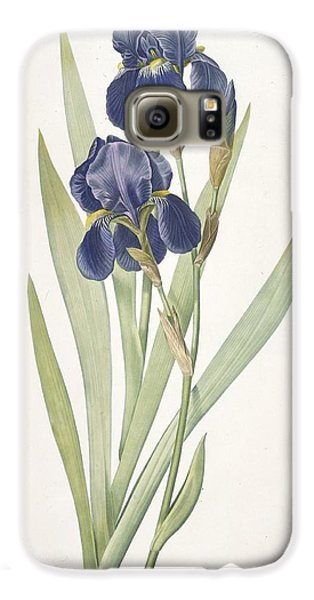 Iris Germanica Bearded Iris Galaxy S6 Case by Pierre Joseph Redoute