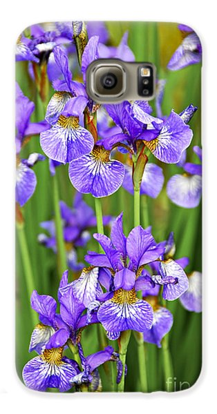 Irises Galaxy S6 Case by Elena Elisseeva
