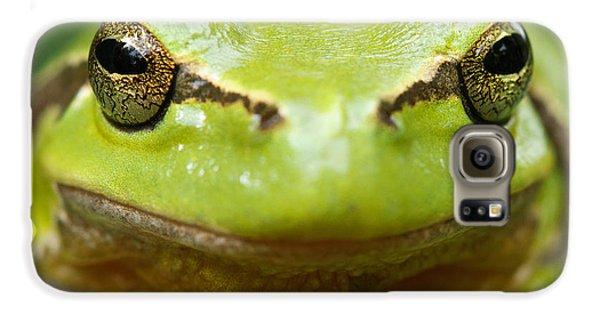 Amphibians Galaxy S6 Case - It's Not Easy Being Green _ Tree Frog Portrait by Roeselien Raimond