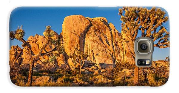 Desert Galaxy S6 Case - Joshua Tree Sunset Glow by Peter Tellone