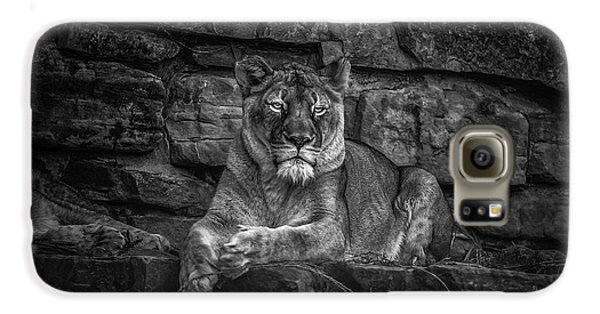 Keen Eyed Lioness Galaxy S6 Case