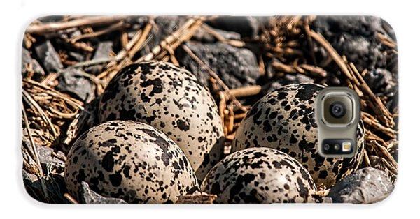 Killdeer Nest Galaxy S6 Case