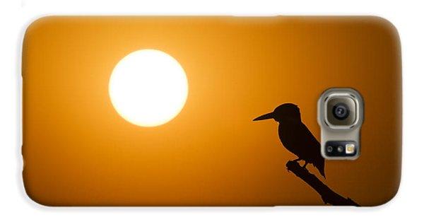 Kingfisher Sunset Galaxy S6 Case