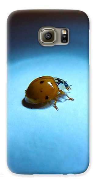 Ladybug Under Blue Light Galaxy S6 Case by Marc Philippe Joly