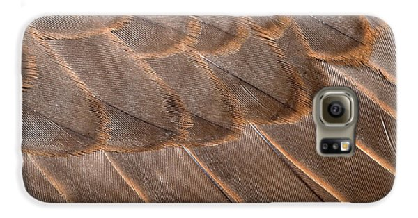 Lanner Falcon Wing Feathers Abstract Galaxy S6 Case by Nigel Downer