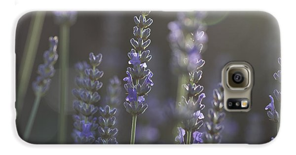 Galaxy S6 Case featuring the photograph Lavender Flare. by Clare Bambers