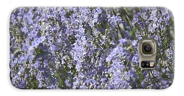 Beautiful Galaxy S6 Case - #lavender by Georgia Fowler