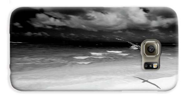 Laysan Albatross French Frigate Shoals Galaxy S6 Case by Paul D Stewart