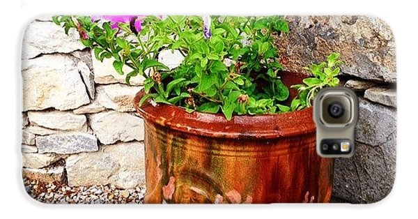 Decorative Galaxy S6 Case - Anduze Flower Pot With Petunias by Cristina Stefan